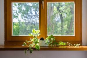 new wooden window